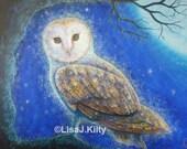 Barn Owl - High Quality L...