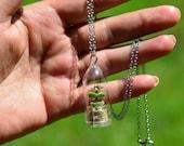 Live Tulip Necklace Plants - Succulent Terrarium Flower Necklace, Key chain, Fridge Magnet - Tulip and Terrarium - Boo-Boo Plant