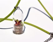 Live Plants Terrarium Necklace - Succulent and Cacti Plant Necklace - Flower Necklace Plants Succulent and Cacti - Boo-Boo Plant