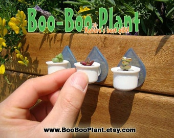 Boo-Boo Nest - Live Cacti Terrarium Flower Clip Holder for Plants Living Inside a Tiny Capsules - to be used with Boo-Boo Plant