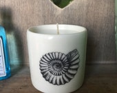 Scented candle in a hand thrown white porcelain cylinder,embellished with three Victorian era Amonites.Sandalwood Black Pepper fragrance.