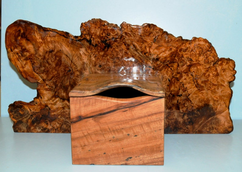 Maple Root Burl and Spalted Pecan Box OOAK image 0