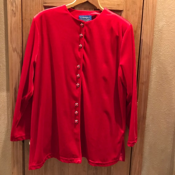 Velveteen Blouse or Shirt, Size 1X, from Willow Ri