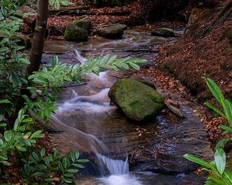 Stream at Maspie Den, Fife. Fine art photographic print showcasing Scottish Nature Photography