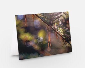 Unique Luxury Greeting Cards using Nature and Landscape photography from Scotland. Multipack of 5. Personalisation available.