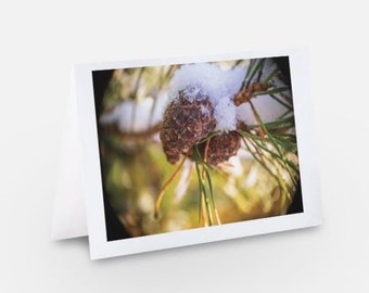 Unique Luxury Christmas Cards using Nature and Landscape photography from Scotland. Choose your own pack of 5 and personalisation available.