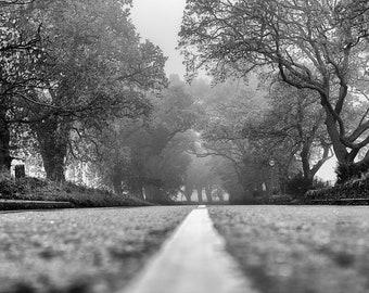 Misty Road, Fife. Fine art photographic print showcasing Scottish Nature Photography