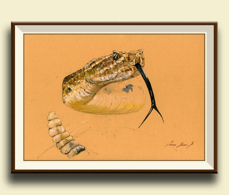 Sonnettes Portrait Du Impression Mur Désert Print À Animaux Peinture Tête Américaine Aquarelle Serpent Art Crotalus Forêt 3R5L4Aj