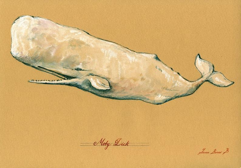 white Sperm whale