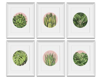 Set of 6 x A4 PLANTS ON PINK prints