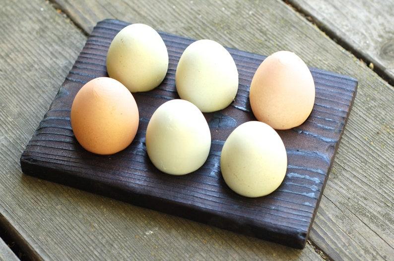 Chicken Egg Holder  Wood Egg Storage  Rack Collector  Shou image 0