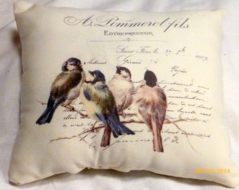 Paris pillow - Vintage French Ad Pillow - Birds on a branch - Decorative Throw Pillow - French Pillow - French country decor