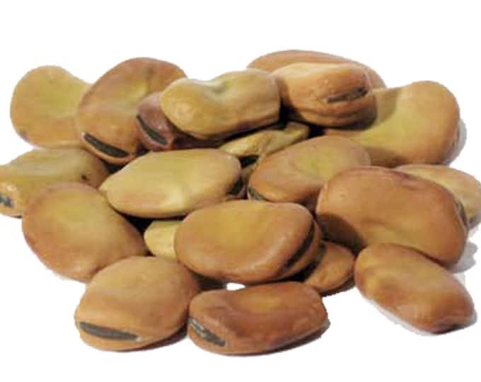 1lb Bulk Mojo Wish Beans Loose Dried, Mojo Beans, Bulk Wholesale (Vicia faba), 1 Pound Dried Smudge Supplies, Herb Supplies, Loose Dry Beans