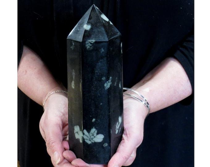 LARGE 3.9lbs Natural Black Chrysanthemum Stone Obelisk, Crystal Gem Obelisk Point, Natural Plum Flower obelisk crystal wand point healing,