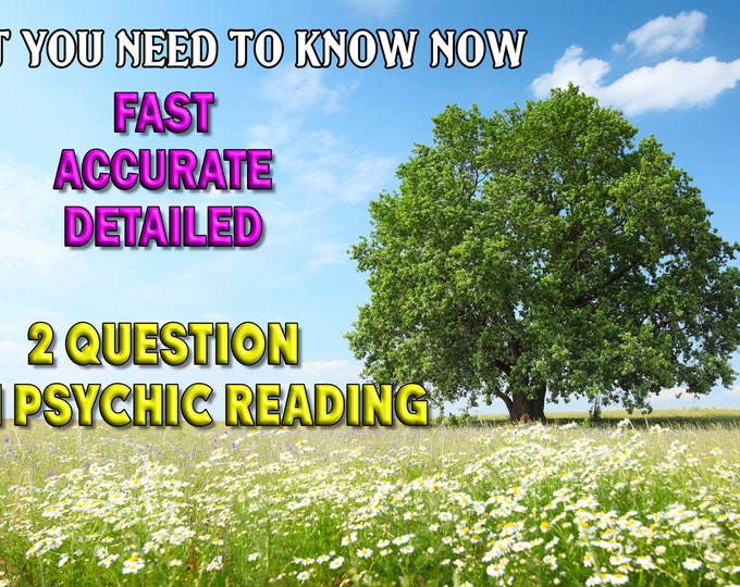 MINI 2 Question Psychic Reading, FAST Accurate Professional, Detailed, 20+ Years Experience, Psychic Intuitive Reading, Psychic Reading