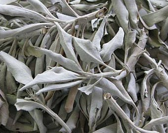 1lb White Sage Loose Dried Leaf, California White Sage Smudge Supplies, Sage Leaf 1 Pound, Sage Smudge Bundle, Smudge Supplies, Sage Leaf