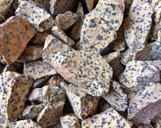 Bulk 1/2lb Raw Dalmatian Jasper Gemstones, Bulk Wholesale Dalmatian Rough Crystals Stones, Dalmatian Jasper Rough Gems, Bulk Crystals