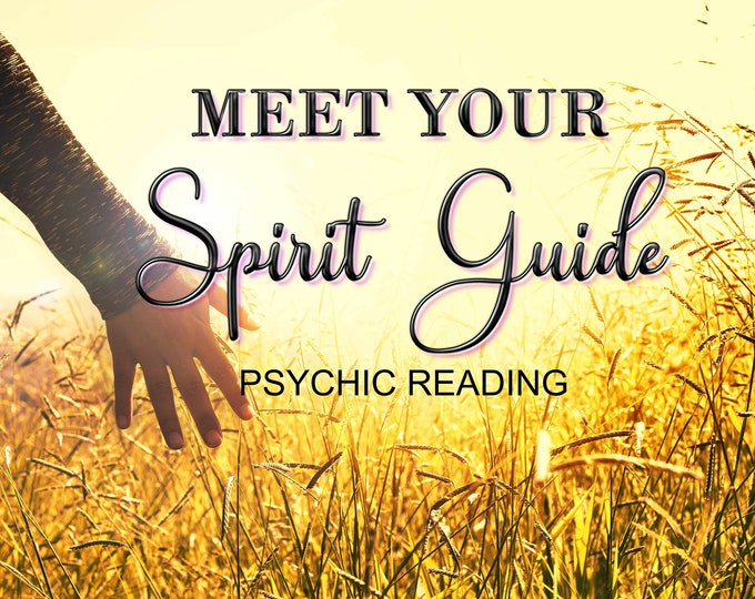 MEET Your SPIRIT GUIDE, Psychic Reading, Connect with Your Guide, Professional, Detailed, 20+ Years Experience, Personalized Email Reading