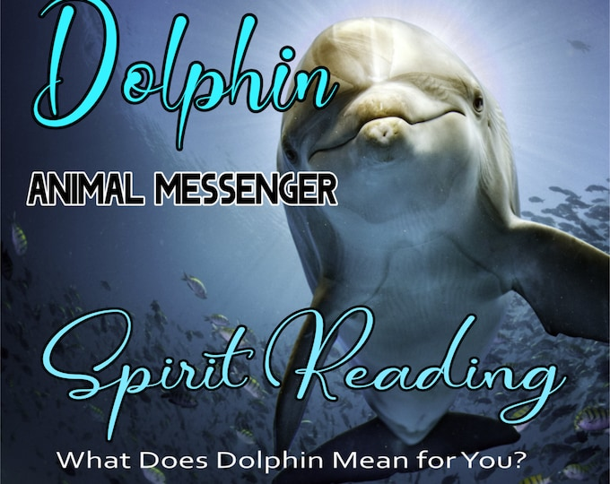 DOLPHIN SPIRIT Reading, Dolphin Totem Animal Reading, Professional Detailed, 20+ Years Experience, Intuitive Reading, Psychic Reading