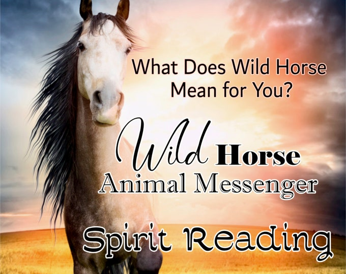 WILD HORSE SPIRIT Reading, Horse Totem Animal Reading, Professional Detailed, 20+ Years Experience, Psychic Intuitive Reading, Animal totem