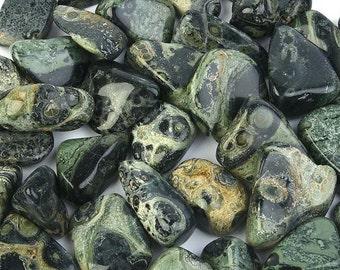Bulk 1lb Tumbled Green Kambaba Jasper Gemstones, Bulk Wholesale Tumbled Stones, Tumbled Jasper Gemstones, Bulk Crystals, Bulk Gemstones