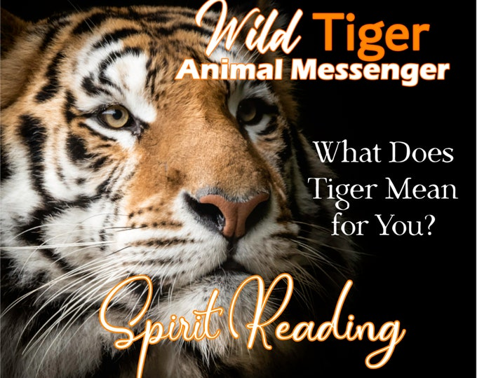 WILD TIGER SPIRIT Reading, Tiger Totem Animal Reading, Professional Detailed, 20+ Years Experience, Psychic Reading, Animal Totem Oracle
