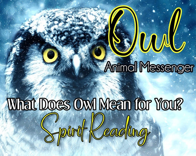 OWL SPIRIT Reading, Owl Totem Animal Reading, Professional Detailed, 20+ Years Experience, Intuitive Reading, Psychic Reading