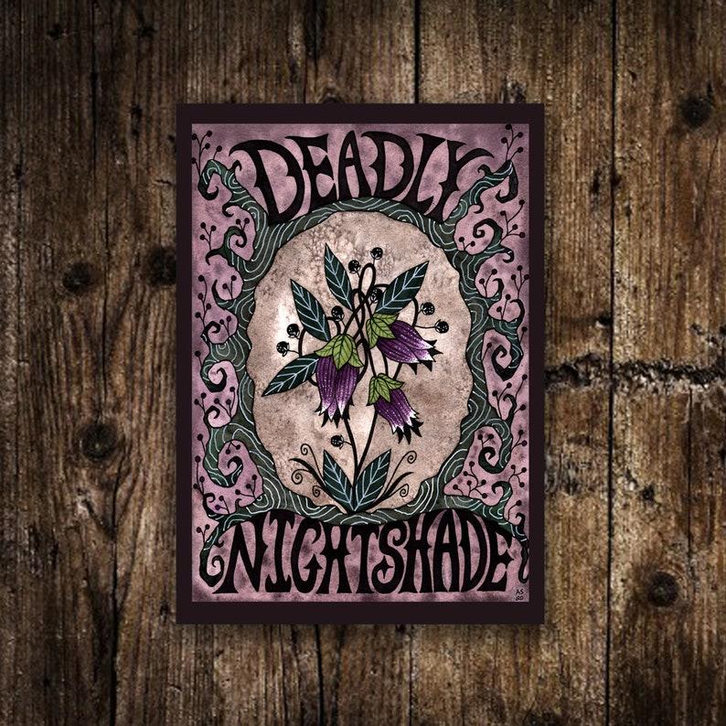 Mini A6 Deadly Nightshade Print  Small Purple Green Witches 1 Mini Print