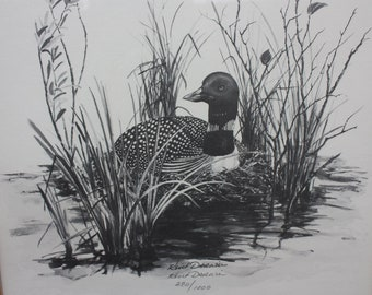 loon drawing etsy