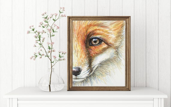 Illustration D Un Mignon Renard Roux Fox Portrait Etsy