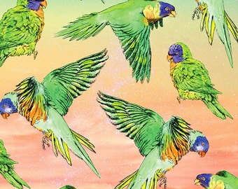 Somewhere over the rainbow, Lorikeet | A3 Limited edition Giclée print | Alykat Creative Aussie series | Pattern birds