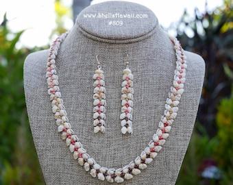 7 12 Niihau shell braceletMomi /& Kahelelani shells #351