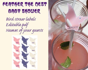Baby Shower Feather the Nest Bird Straw labels