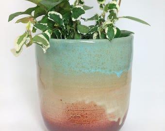 Tall Succulent Planter, Ceramic Flower Pot, Pottery Planter, Cactus Pot, Stoneware Planter, Rustic Pot, Has Drainage Holes, MADE TO ORDER