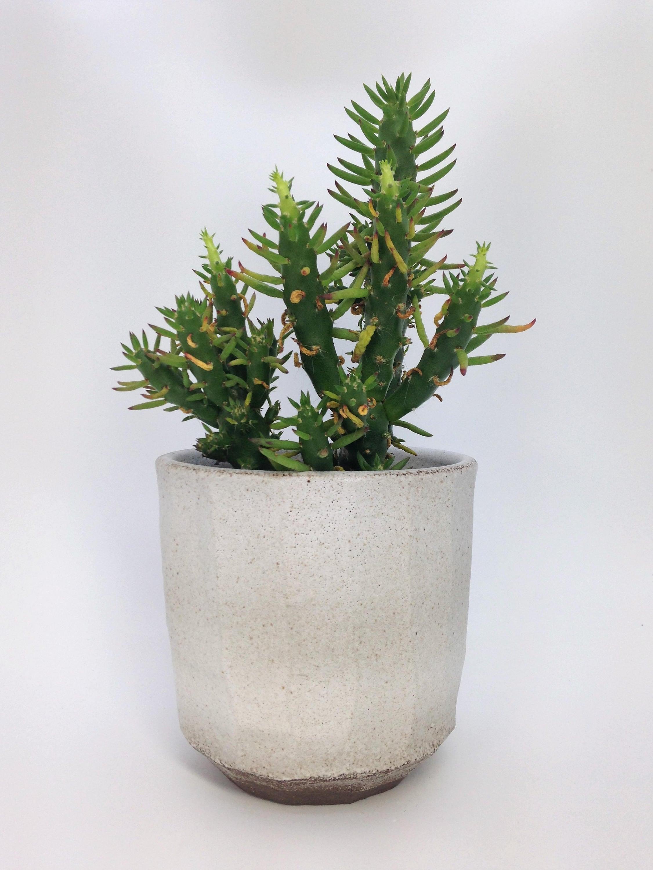 g om trique jardini re vase pour plante grasse planteur. Black Bedroom Furniture Sets. Home Design Ideas