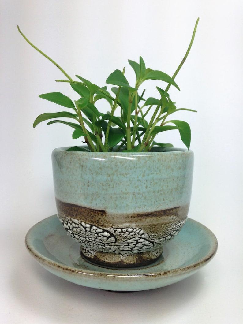 Stoneware Planter Pottery Planter Green Cactus Pot Drainage Hole MADE TO ORDER Succulent Planter Ceramic Flower Pot Air Plant Planter