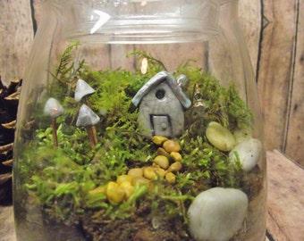 Terrarium, Live Moss Terrarium, Fairy House, Fairy Garden in Glass, Indoor Plant, Mushroom Terrarium, Mother's Day Gift, Flower Alternative