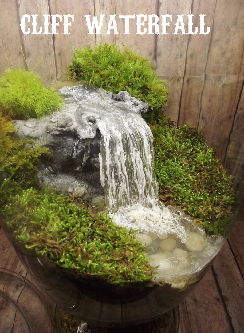 How to Use EZ Water to Make Miniature Water Features Gardeb