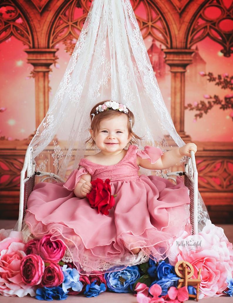 ec0272ce9 Aurelia Toddler Princess Dress • Sleeping Beauty Toddler Dress • Princess  Baby Dress • Sitter Princess Dress • Princess Newborn Gown