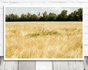 Wheat Field Photo, Nature Photography, Wheat Print, Summer Print, Printable Photo, Printable Wall Art, Landscape Print, Digital Download