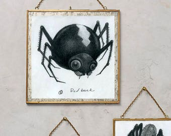 Original Illustration, Deadly Redback Spider