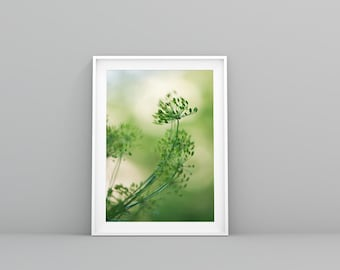Farmhouse Kitchen Decor, French Country Kitchen Wall Art,  Cottage Chic Dill Photography Print, Nature Photography, Green Art Print
