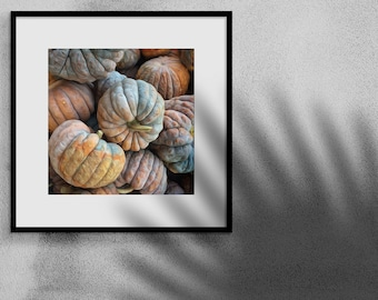 Autumn Printable Decor, Pumpkin Photo Downloadable, Instant Download Printable Art, Printable Kitchen Wall Art 8x10, Autumn Gift For Home