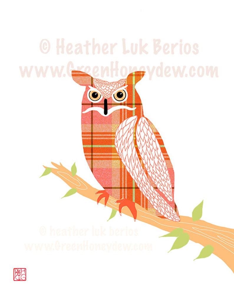 Owl  Art Print Beautiful Orange Bird Illustration Modern image 0