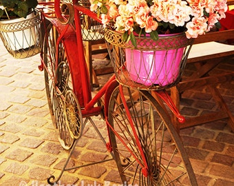 Bicycle Flowerpots - Wall Decor - Fine Art Photography Print, Pink, Red, Yellow, Orange