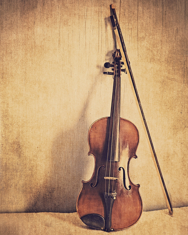 SALE: Violin Fine Art Photography Musical Instrument Music | Etsy