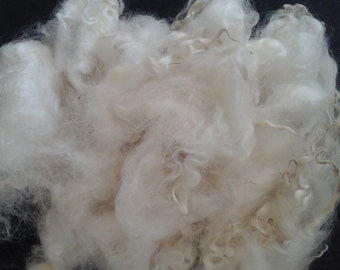 COTSWOLD WASHED FIBRE Tour of British fleece rare breed