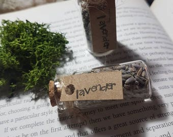 Magical herb vial of Lavender