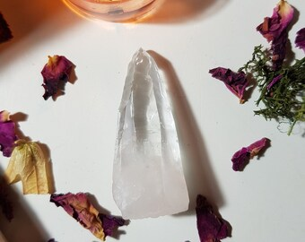 Lemurian from Diamantina, Brazil