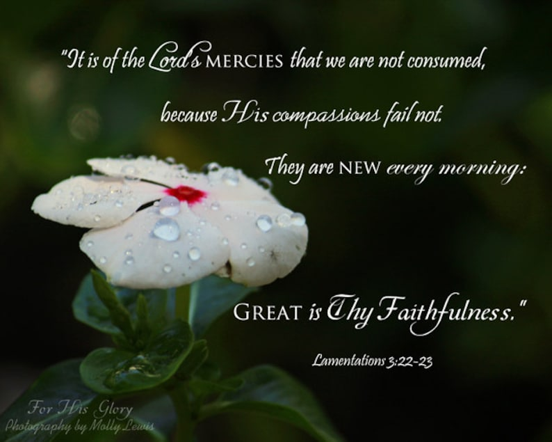 025 It is of the Lord's Mercies... image 0